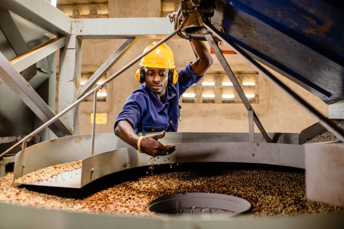 Fortune Coffee Oeganda