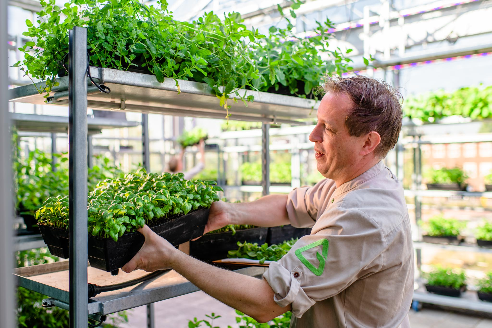 The Green House - Afdeling Beeld